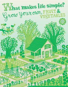 Grow your own fruit & vegetables Illustration for Flow magazine Permaculture, Gardening For Beginners, Gardening Tips, Le Baobab, Multimedia, Lilla Rogers, Vegetable Illustration, Urban Farming, Pattern Illustration