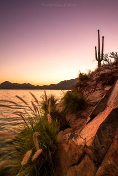 Saguaro Lake Cloudless Skies - .Gerry Groeber