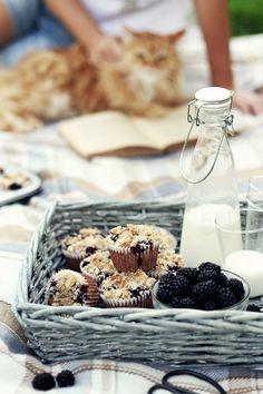 Muffiny orkiszowe z owsianką i jeżynami