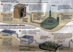 Descripción Humedal Artificial