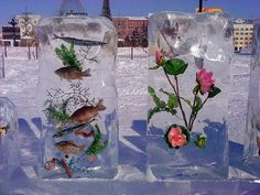 Цветные ледяные шары и другие сказочные идеи из льда. Просто, быстро, эффектно! » Женский Мир
