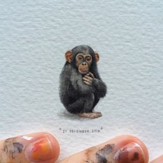 Chimpanzee | Pan troglodytes. 18 x 28 mm miniature watercolour (at Monkey World)