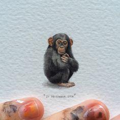 Day 361: Chimpanzee | Pan troglodytes.  18 x 28mm. #365postcardsforants #miniature #watercolour #wdc624 #chimpanzee #capetown #monkeyworld (at Monkey World)