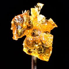 Hash Oil: Why BHO, Shatter, Dabs or Honey Oil are the Latest Stoner Craze | Rolling Stone