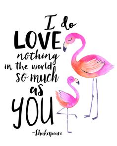 I do love nothing the world so much as you - Shakespeare. Cute Meme combine flamingo with Shakespeare Flamingo Decor, Flamingo Party, Flamingo T Shirt, Flamingo Nursery, Flamingo Print, Pink Flamingos, Flamingo Gifts, Flamingo Beach, Quote Prints
