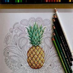 🍍🍍🍍😍😍😍 By @zuzka.hanova . #drawing #secretgarden #jardimsecreto #johannabasford #jardimsecretolove #staedtler #mycreativeescape #coloringbook #polychromos #enchantedforest #lostocean #draw #coloring #pencil #florestaencantada #crayola #stabilo #colors#love#adultcoloring #creative #colouring#colour#artist #oceanoperdido#boanoite#bomdia#goodmorning#boatardee#bomdia