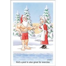 11 best pool christmas cards images on pinterest christmas cards