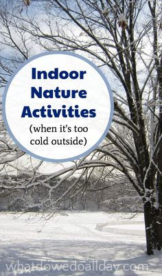 Easy indoor nature activities for kids in winter when you are stuck inside. Good ideas.