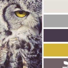Сочетания серого с другими цветами - Красота, вдохновленная природой
