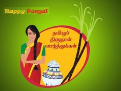 happy pongal festival wishes in tamil Baby Wallpaper, Full Hd Wallpaper, Nature Wallpaper, Mobile Wallpaper, Wallpaper Free Download, Wallpaper Downloads, Pongal Images, Eid Milad Un Nabi, Happy Pongal