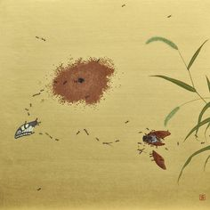 Kotaro ISOBE Biotope.Summer's End ビオトープ、夏の終わり
