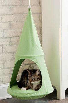 ♥ Cool Cat Stuff ♥ Hanging cat furniture is great if you don't want ugly cat furniture sitting in the corner of the room! It won't scratch up the floors and it looks cool too!