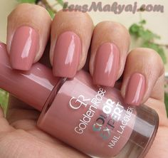 golden rose color expert 09 - Поиск в Google