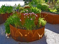 This raised bed uses corten steel- which is a recycled steel that will take 3-6 months to rust, then the inside will be protected from the elements (and last a really long time!) You can buy this steel in rolls, so you can created curved beds.