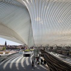 Calatrava's Liège-Guillemins Station captured  in new photographs by Luke Hayes