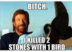 2 stones with one bird