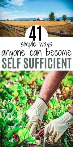 41 Ways to Become More Self-Sufficient Self sufficient living and homesteading can sometimes seem like a lofty goal, but I'm here to sho Homestead Farm, Homestead Gardens, Homestead Survival, Survival Prepping, Survival Skills, Survival Gear, Homestead Living, Survival Quotes, Bushcraft