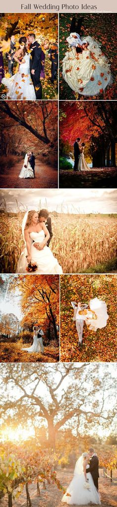 Fall wedding photo ideas / http://www.deerpearlflowers.com/fall-wedding-ideas-for-2017/
