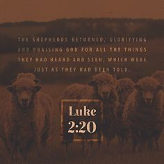 VERSE OF THE DAY via @youversion  Then the shepherds returned glorifying and praising God for all the things that they had heard and seen as it was told them. Luke 2:20 NKJV  http://ift.tt/1H6hyQe  Facebook/smpsocialmediamarketing  Twitter @smpsocialmedia