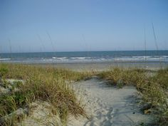 Isle of Palms, SC  Beautiful beach, super surf, family friendly-My family vacation spot every year