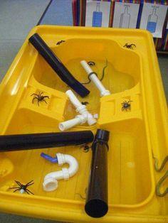 Inch Wincy Spider