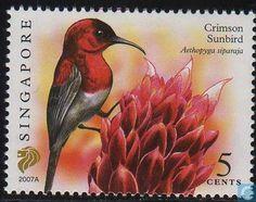 2007 Singapur - Pájaros