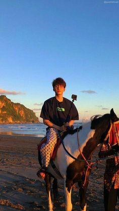 Mingyu Wonwoo, Seungkwan, Woozi, Wallpapers Kpop, Seventeen Wallpapers, K Pop, Joshua Seventeen, Jeonghan Seventeen, Won Woo