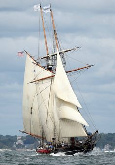 The Amistad, site of a mutiny of kidnaped Africans bound to be sold into slavery. John Quincy Adams argued their case to the U. Fishing Bait, Fishing Humor, Fishing Gifts, Bass Fishing, Crappie Fishing, Saltwater Fishing, Fishing Reels, Classic Sailing, Ship Paintings