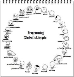 Programming student's lifecycle ... for me I'd replace Facebook with Pinterest and include YouTube with the interest one