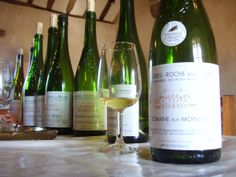 Hostess with the Mostest Wine Shopping Tour | Saumur Wine Tours