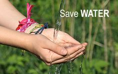 Save Water this upcoming gardening season with DripWorks drip irrigation products! Water Saving Tips, Pond Liner, Drip Irrigation System, Farm Gardens, Save Water, Farmer, Destinations, Gardening, Products