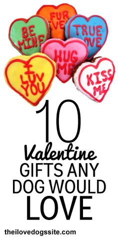 10 Valentine Gifts Any Dog Would Love!