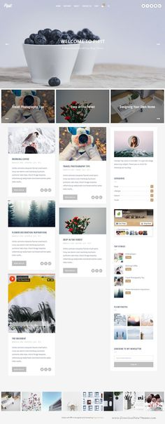 Pipit is an elegant, clean, modern and responsive WordPress blog theme. It has great features like full screen image, video and slider hero, slick featured posts slider, unique layouts, full width media feed and so on.