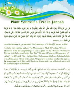 Hadith, insh'allah many trees will be planted for you!