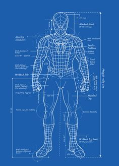 Spider-Man Blueprint