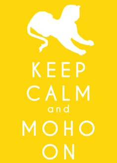 """I love thinking of """"MoHo"""" as a verb. And what exactly it means """"to MoHo."""" :)"""