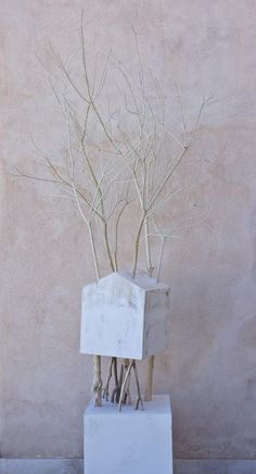 Legno 2013 Giuseppe Agnello Breath Of The Wind, Clouds, Sky, Landscape, Landscaping Ideas, House, Heaven, Diy Landscaping Ideas, Scenery