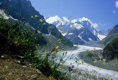 Partez à la découverte du majestueux Mont Blanc qui s'élève à 4810 mètres d'altitude.