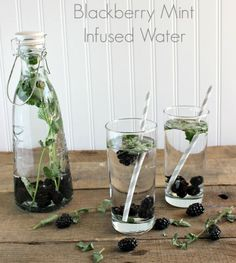 Blackberry Mint Infused Water |  12 Fruit Infused Water Recipes To Keep You Glowing by Homemade Recipes at  http://homemaderecipes.com/healthy/12-fruit-infused-water-recipes/