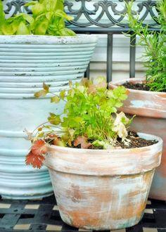 26 Diy Pot Painting Ideas For The Garden 26 Diy Pot Painting Ideas For The Garden Balcony Garden Web Balcony Garden, Garden Pots, Vegetable Garden, Balcony Plants, Herb Pots, Gardening Photography, Mosaic Pots, Garden Web, Painted Flower Pots
