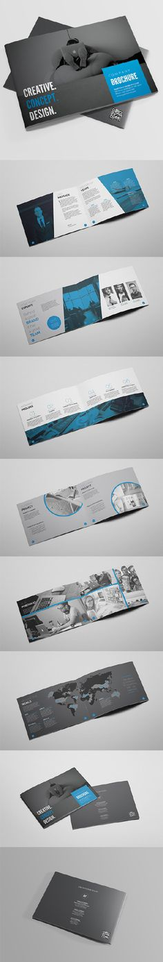 Multipurpose Business Brochure Tempalte Design Download Http