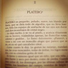 """""""PLATERO  ES PEQUEÑO, peludo, suave…"""" #RetoPlatero #2014AñoPlatero #Día1"""
