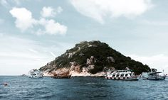Diving Koh Tao.   - Explore the World with Travel Nerd Nici, one Country at a Time. http://TravelNerdNici.com