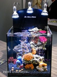 The striking nano reef aquarium pictured above is a demonstration tank that AquaMedic had built simply to show off a few of their products: Nanoprop 5000, Turboflotor 500 Blue and three 3 watt Aquasunspots