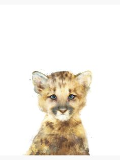 """Little Mountain Lion"" Metal Print by AmyHamilton   Redbubble Lion Poster, All Poster, Hamilton Poster, Kids Bed Linen, Thing 1, Lion Art, Mountain Lion, Art Mural, Woodland Animals"