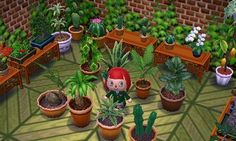 animal crossing new leaf greenhouse - Google Search