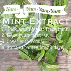 How to make mint extract by @Cory Blyth Ettiene