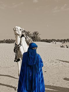 touareg man and his camel Desert Dream, Desert Life, Desert Dunes, Arabian Nights, North Africa, World Cultures, People Around The World, Shades Of Blue, Caravan