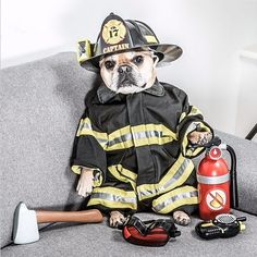 Mark your calendars: July 15th is National Pet Fire Safety Day~!