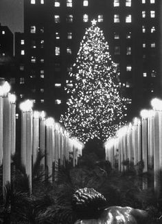 Vintage Christmas Photograph ~ Rockefeller Center Christmas Tree at Night. New York, NY ~ December 1952
